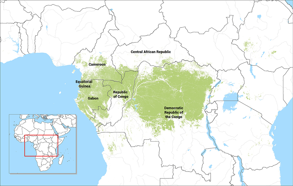 Tropical Rainforest In Africa Map.Stories Carpe